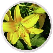 Yellow Day Lilies Round Beach Towel
