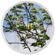 Yellow Finch And Flowers Round Beach Towel