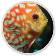 Yellow Fish Profile Round Beach Towel
