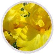 Yellow Floral Irises Flowers Art Prints Baslee Troutman Round Beach Towel