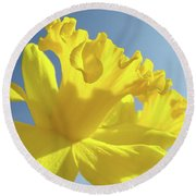Yellow Flower Floral Daffodils Art Prints Spring Blue Sky Baslee Troutman Round Beach Towel