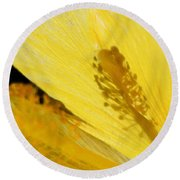 Yellow Flower - Hibiscus Shadow - Sharon Cummings Round Beach Towel