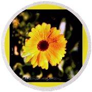 Yellow Flower With Rain Drops Round Beach Towel
