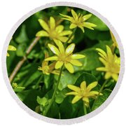 Yellow Flowers On A Green Carpet Round Beach Towel