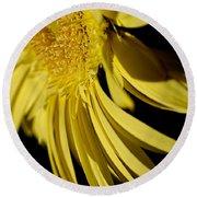 Yellow Gerbera Daisy By Kaye Menner Round Beach Towel
