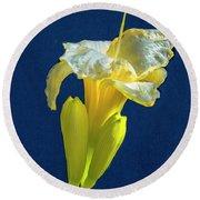 Yellow Glue Blue #f9 Round Beach Towel