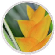 Yellow Heliconia - Hawaii Plants Flowers  Round Beach Towel
