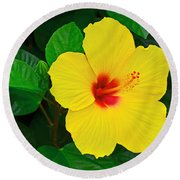 Yellow Hibiscus 3388 Round Beach Towel