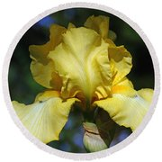 Yellow Iris Is For Passion Round Beach Towel
