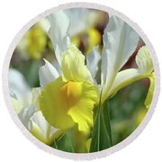 Yellow Irises Flowers Iris Flower Art Print Floral Botanical Art Baslee Troutman Round Beach Towel