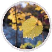 Yellow Leaf Newton Upper Falls Fall Foliage Round Beach Towel
