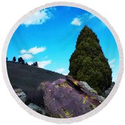 Yellow Lichen Round Beach Towel