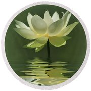 Yellow Lily With Reflections Round Beach Towel