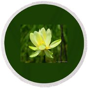 Yellow Lotus Round Beach Towel