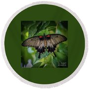 Yellow Mormon Round Beach Towel