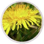 Yellow Mountain Flower's Petals Round Beach Towel