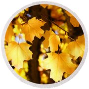 Yellow Nature Tree Leaves Art Prints Bright Baslee Troutman Round Beach Towel