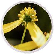 Yellow Pollinate Round Beach Towel