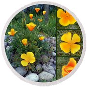 Yellow Poppies Collage  Round Beach Towel