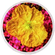 Yellow Poppy And Kalanchoe Flowers Round Beach Towel