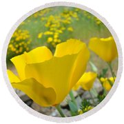 Yellow Poppy Flower Meadow Landscape Art Prints Baslee Troutman Round Beach Towel