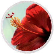 Yellow Red And Coral Hibiscus Profile Round Beach Towel