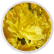 Yellow Rhodies Floral Brilliant Sunny Rhododendrons Baslee Troutman Round Beach Towel