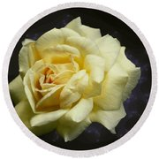 Yellow Rose 2 Round Beach Towel