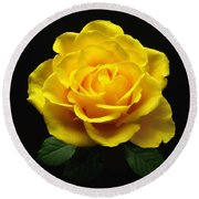 Yellow Rose 6 Round Beach Towel