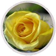 Yellow Rose Round Beach Towel