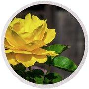 Yellow Rose Of Los Gatos Round Beach Towel