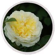 Yellow Rose Of Texas Too...   # Round Beach Towel
