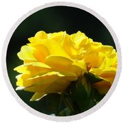 Yellow Rose Sunlit Rose Garden Landscape Art Baslee Troutman  Round Beach Towel