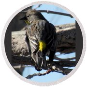 Yellow Rumped Warbler Round Beach Towel
