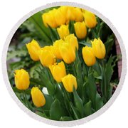 Yellow Spring Tulips Round Beach Towel
