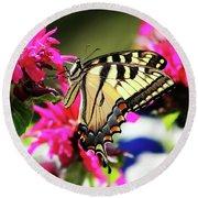 Yellow Swallowtail     Round Beach Towel