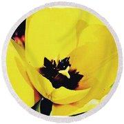 Yellow Tulip 2 Round Beach Towel