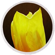 Yellow Tulip 3 Round Beach Towel