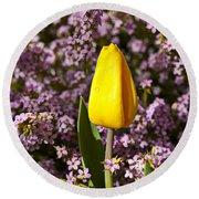 Yellow Tulip In The Garden Round Beach Towel