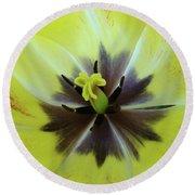 Yellow Tulip Macro Spring Floral Garden Baslee Troutman Round Beach Towel