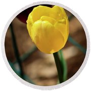 Yellow Tulip Round Beach Towel
