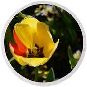 Yellow Tulip With Red Stripe Round Beach Towel