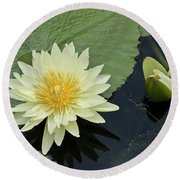 Yellow Water Lily With Bud Nymphaea Round Beach Towel by Heiko Koehrer-Wagner