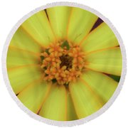 Yellow Zinn Round Beach Towel
