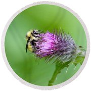 Yellowhead Bumblebee Round Beach Towel