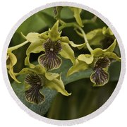 Yellowish Orchids Round Beach Towel