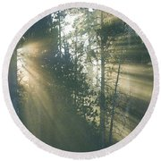 Yellowstone Morning Round Beach Towel