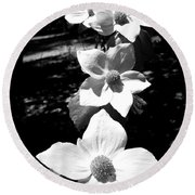 Yosemite Dogwoods Black And White Round Beach Towel