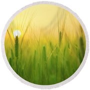 You'll Remember Me When The West Wind Moves Upon The Fields Of Barley Round Beach Towel