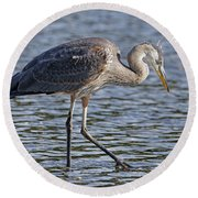 Young Heron Round Beach Towel